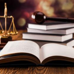 Quali sono le differenze tra persona fisica e persona giuridica