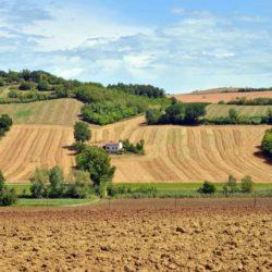 La Cassazione sulla edificabilità dei terreni agricoli ai fini ICI