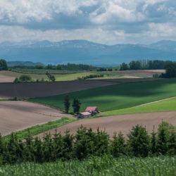 Banca dati del Catasto Terreni aggiornata al 2018
