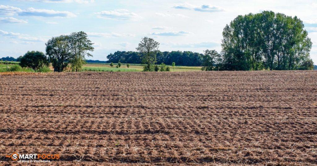 Reddito dominicale e reddito agrario dei terreni: le differenza
